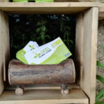 Geel Floricultura - biglietti