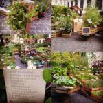 Geel Floricultura partecipa a Bologna in Fiore presso Bologna