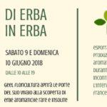 Di Erba in Erba – Porte Aperte in Vivaio 2018