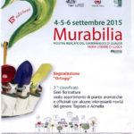 Riconoscimenti Geel Floricultura - Murabilia 2015